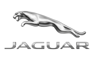 JAGUAR (ягуар) защита двигателя, кпп, подкрылки, накладки на арки