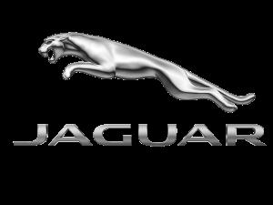JAGUAR (ягуар) защита двигателя, кпп, подкрылки, накладки на арки